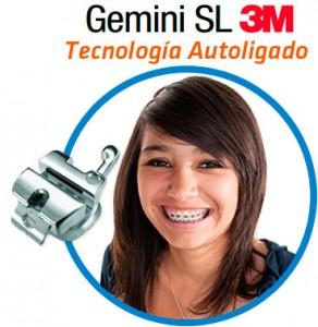 Gemini SL Sur DF